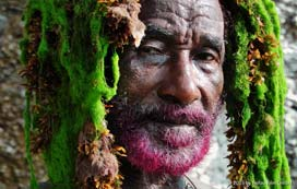 Volker Schaner: Lee Scratch Perry's Vision of Paradise